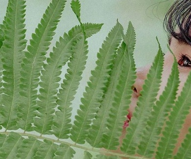 16 plantas para potenciar tu bienestar psíquico y físico