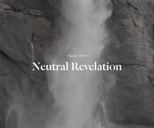 NEUTRAL REVELATION