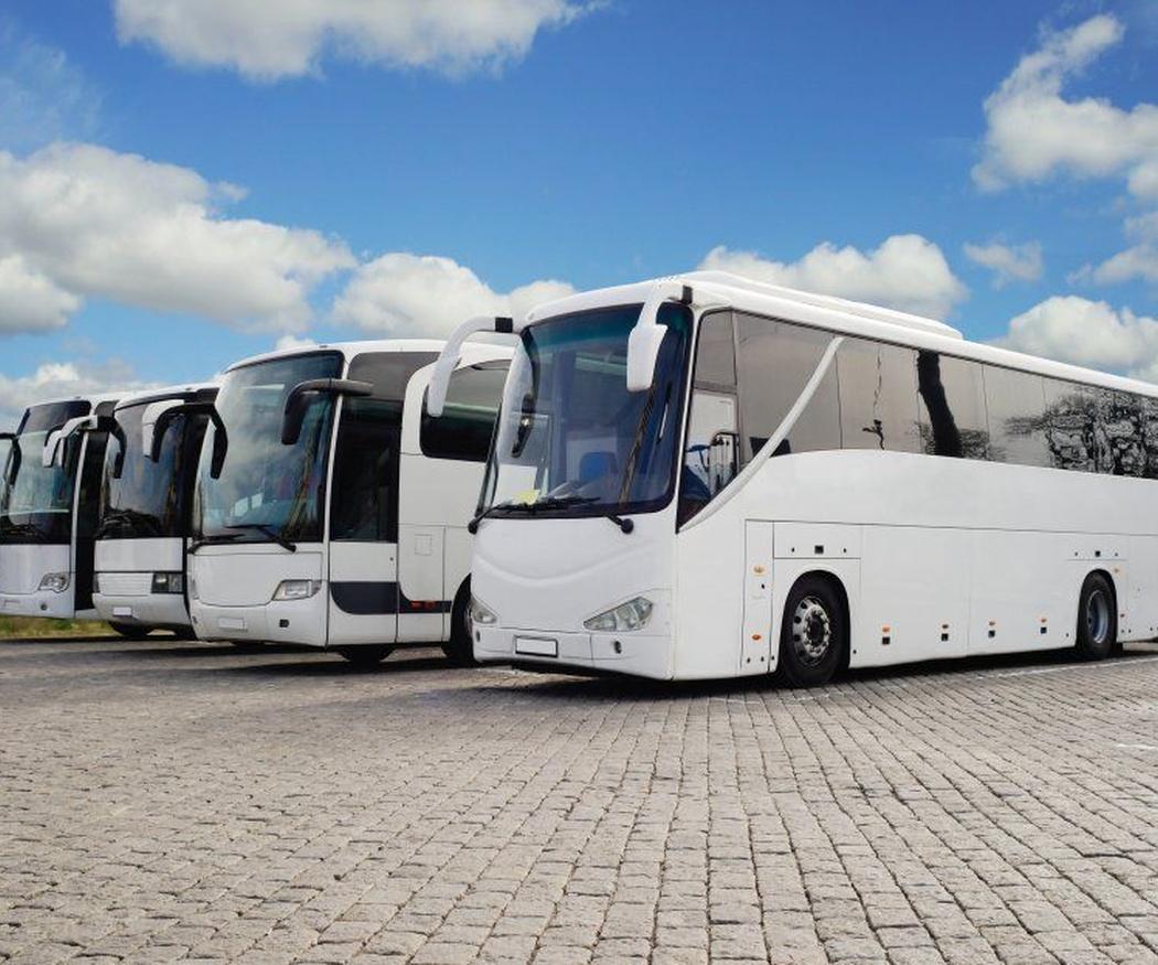 El transporte como una herramienta para mejorar el turismo de la región