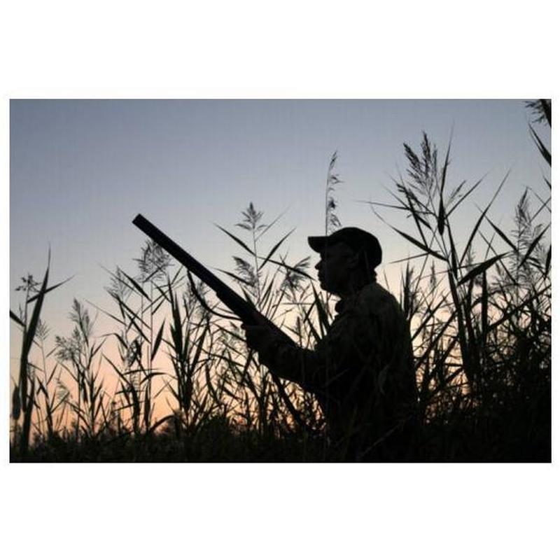 Obtención del permiso de armas: Servicios de Medipsico, S.L.