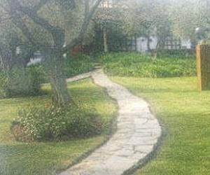 Mantenimiento de jardines  Mairena del Aljarafe