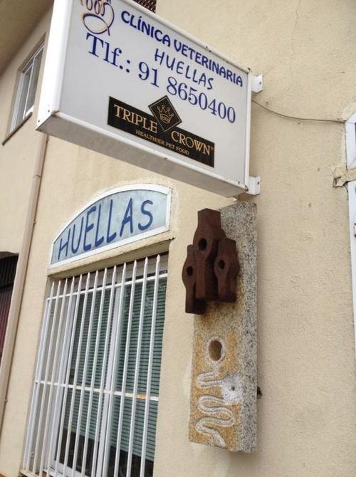 Veterinarios en Navas del Rey | Clínica Veterinaria Huellas