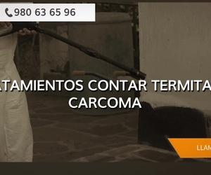 Control de plagas en Zamora | Garsanben Control de Plagas