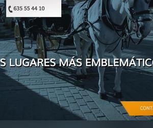 Coches de caballos en Sevilla | JV Tours Sevilla