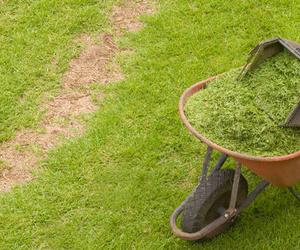 Limpieza de jardines en Girona