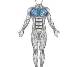 Cirugia del pecho masculino: Ginecomastia