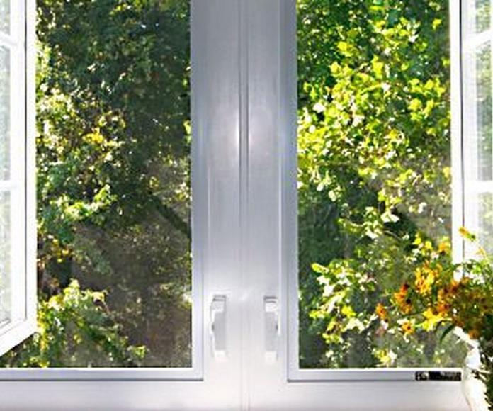 Puertas y ventanas: Productos de Aluminis Solé