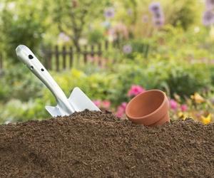 Tratamiento de jardínes