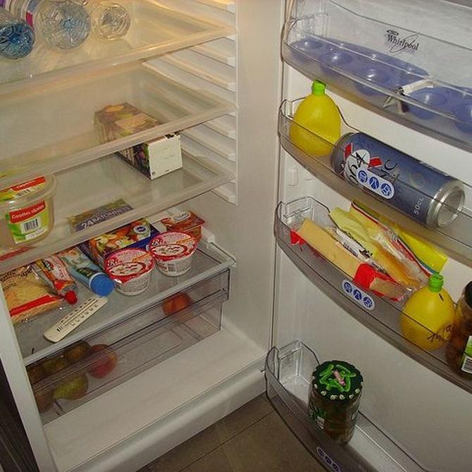Cómo ahorrar en tu factura de la luz con tu frigorífico