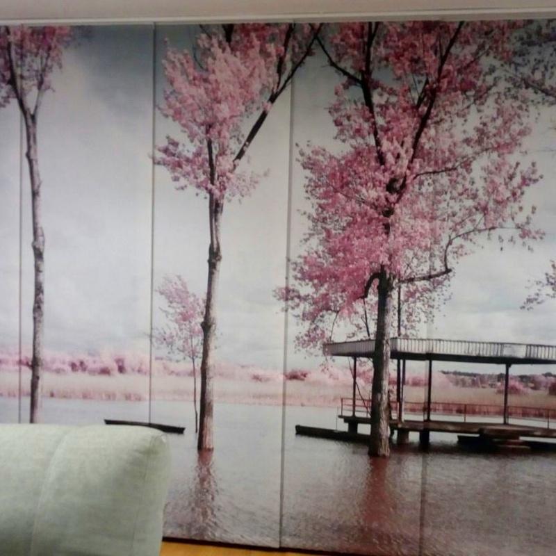 PANELES JAPONESES FOTOGRAFICOS