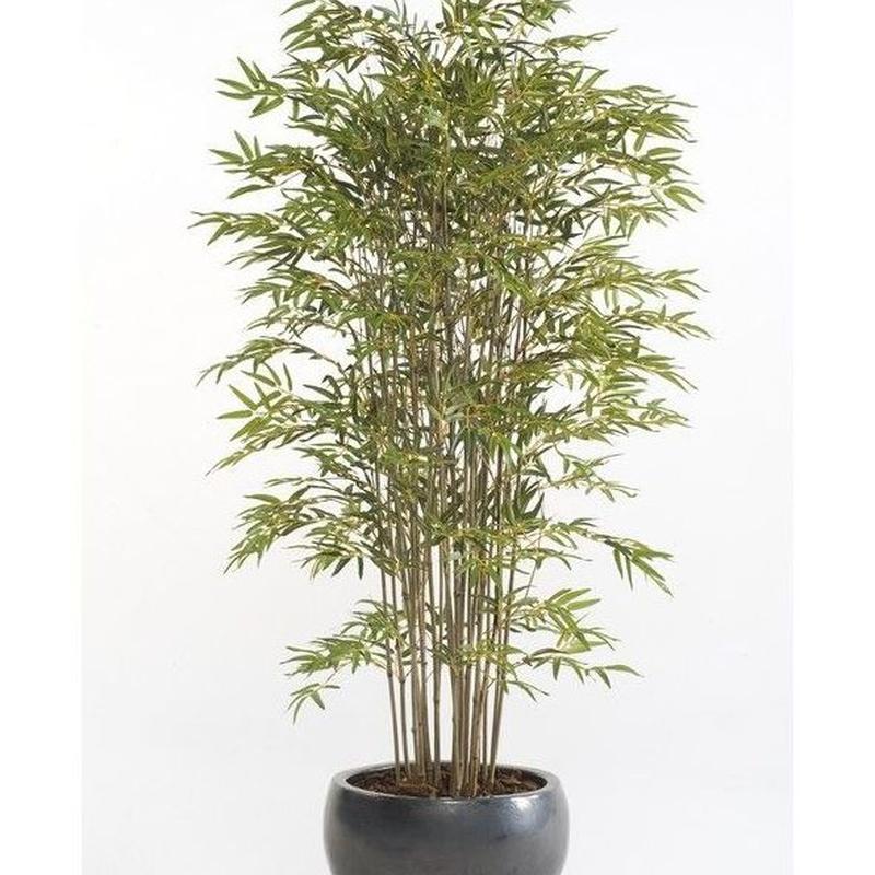 Árbol bambú acabado Deluxe: ¿Qué hacemos? de Ches Pa, S.L.