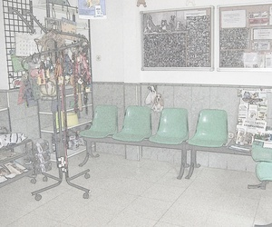 Bienvenidos a Clínica Veterinaria Getafe