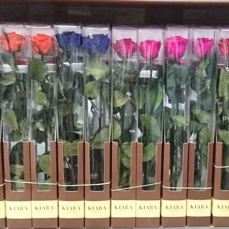 Rosa eterna tallo largo: Servicios de Floristería Contreras