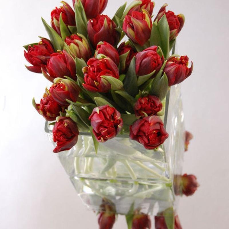 Centro cuadrado con tulipanes