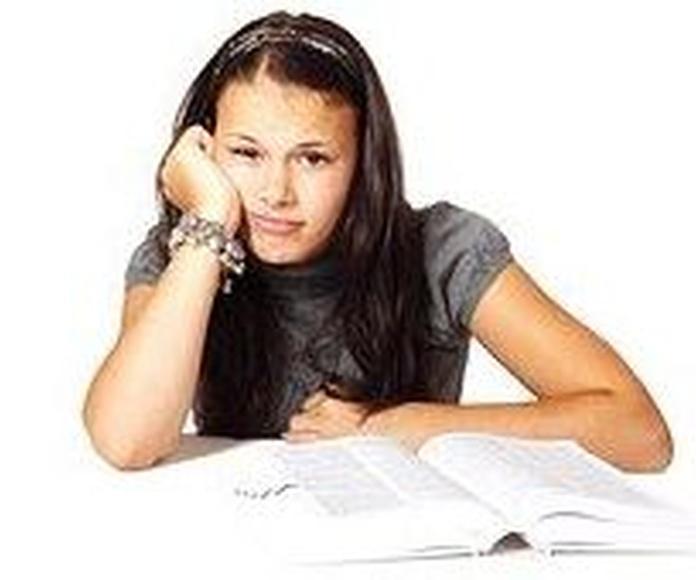 Dificultad del aprendizaje Alcañiz