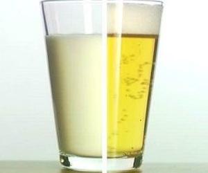 Estudio de Harvard asegura que tomar cerveza es mejor que tomar leche..!!