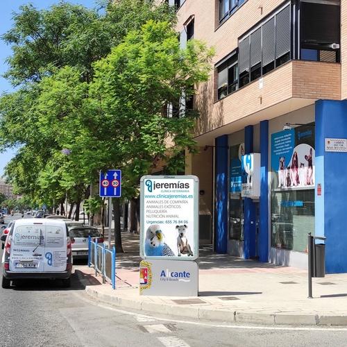Clínica veterinaria en Alicante   Clínica Jeremías