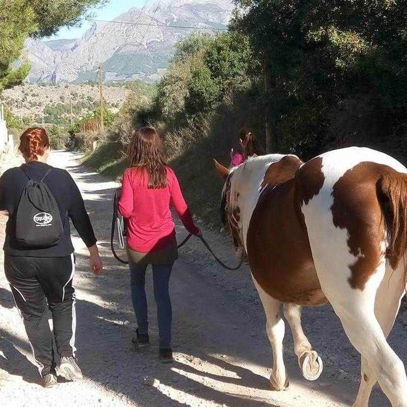 Paseo meditativo con caballo