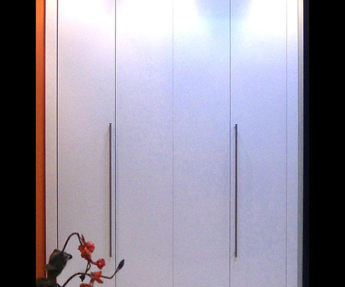 Armarios de puertas PLEGABLES CORREDERAS