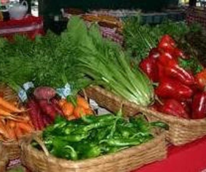 Alimentacion Ecologica: Servicios de Nextland Bio
