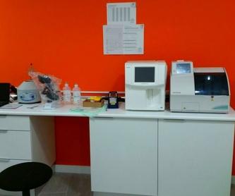 Hospitalización veterinaria Madrid: Productos y servicios de Clínica Veterinaria Boavet