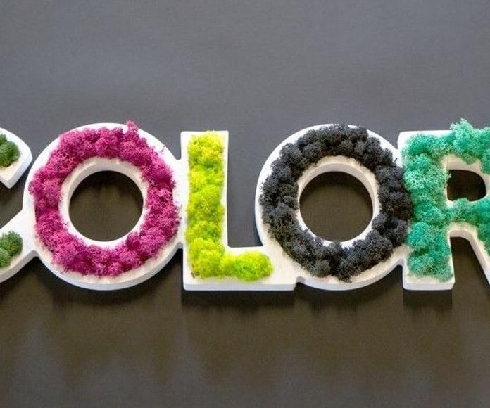 Logo Vegetal en color