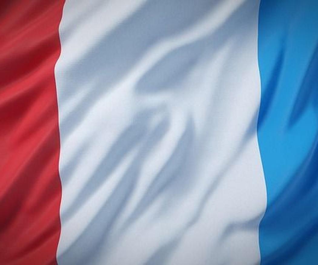 El francés en el planeta