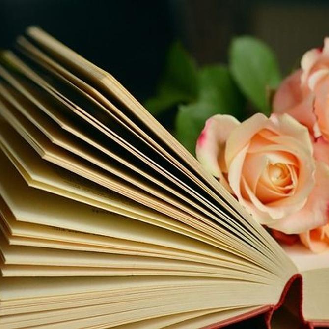 La novela, el cuento, el teatro y el poema
