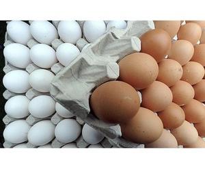 Venta de huevos de diversos tamaños