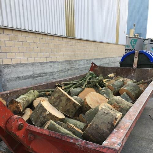 Retirada de madera en Bizkaia