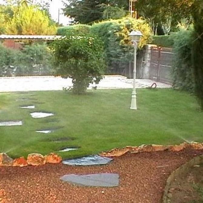 Consejos para que nuestro jardín mantenga su mejor aspecto en verano