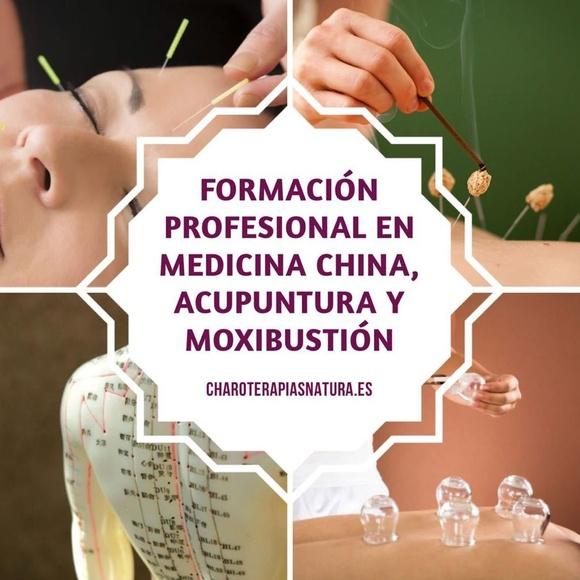 Formación en Medicina Tradicional China, Acupuntura y Moxibustiión