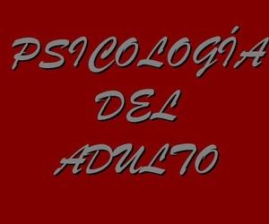PSICOLOGÍA DEL ADULTO