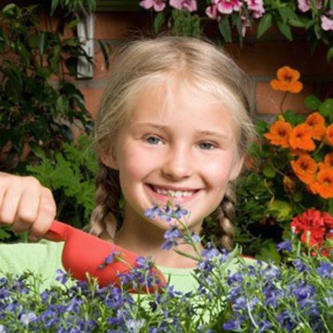 Consejos para preparar tu jardín en verano