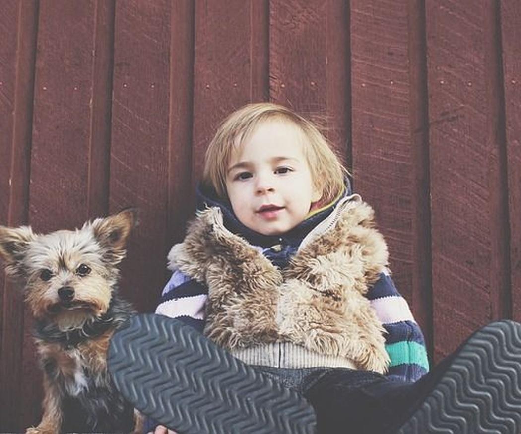 Beneficios de la convivencia entre niños y perros