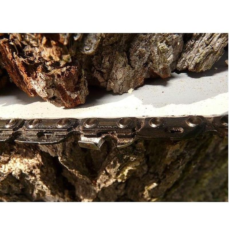 Tala de madera en pié: Servicios   de Explotaciones Forestales Lagarcía