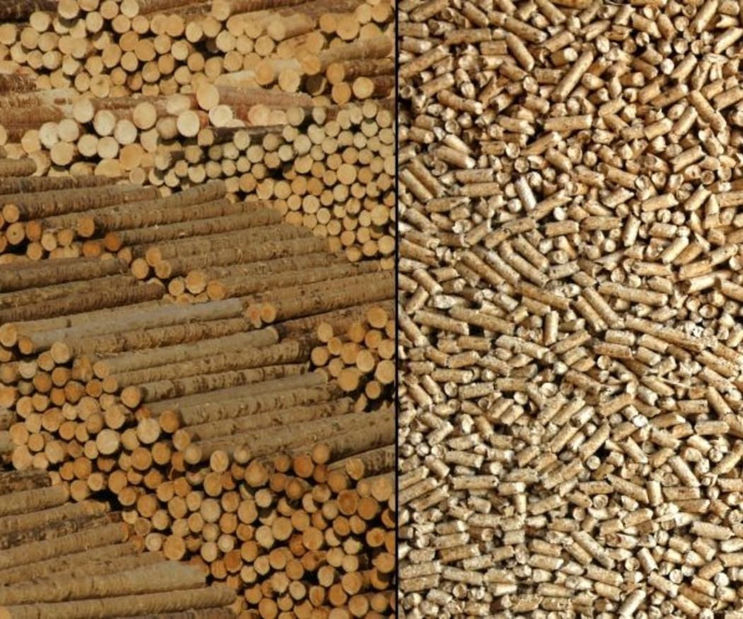 Ventajas de la calefacción de biomasa
