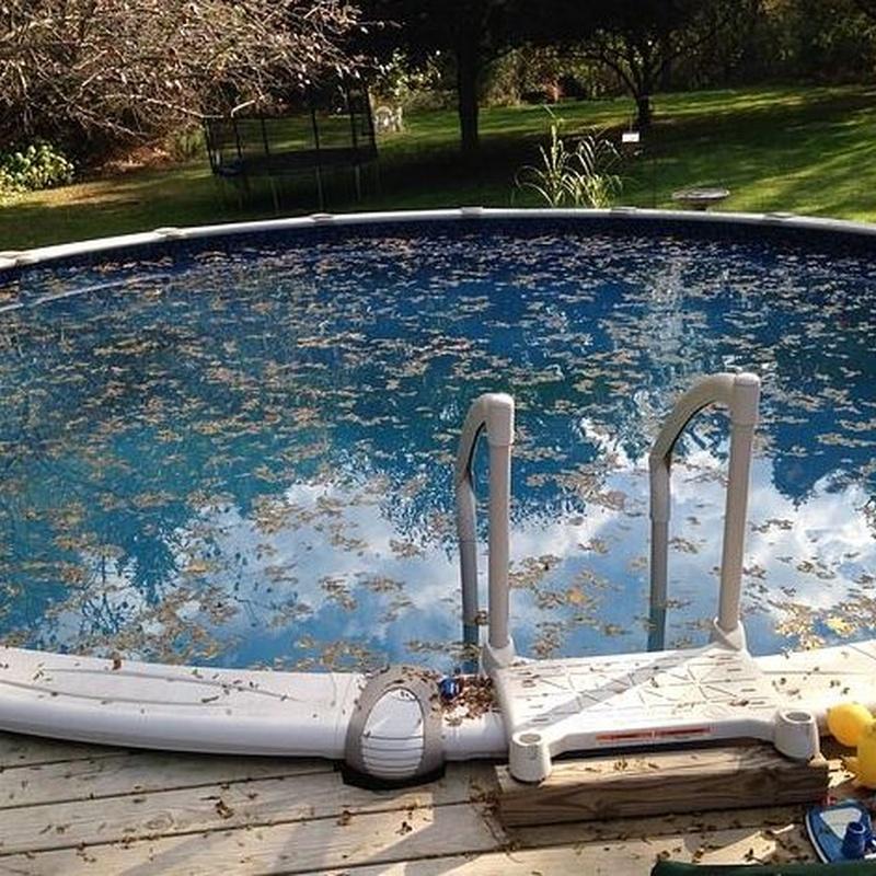 Mantenimiento de piscinas: Servicios de Briservice