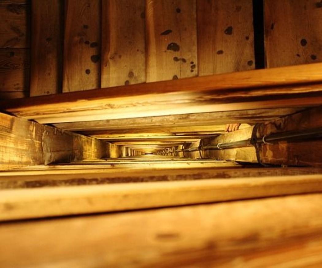 El uso de la madera en la construcción