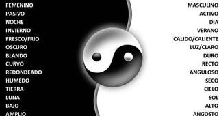 Teoria Yin Yang