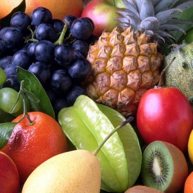 Las cámaras de maduración de frutas