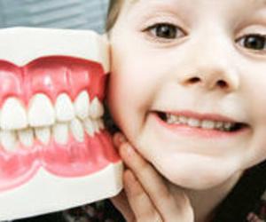 Todos los productos y servicios de Dentistas: Clínica Dental Fortaña-Giménez