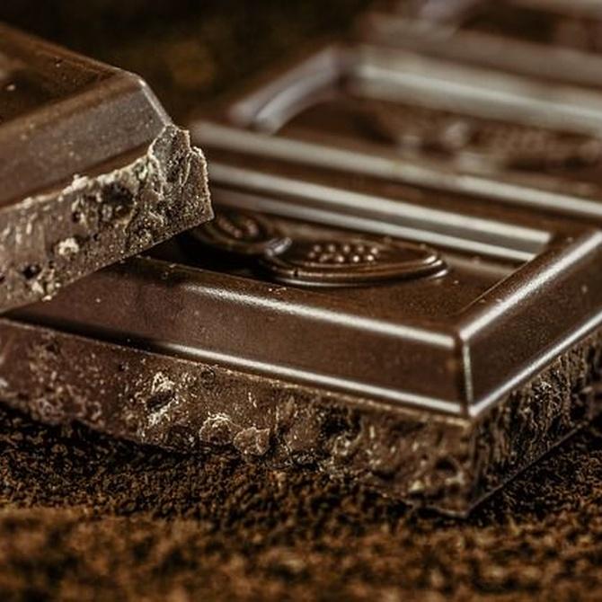 ¿Cuáles son las propiedades nutricionales del chocolate?