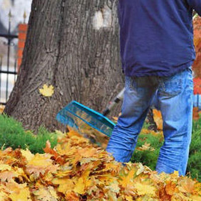 Limpieza y reformas de jardines: Servicios de Voip Jardines
