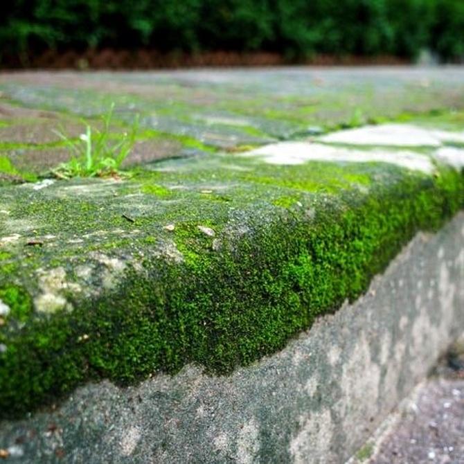 ¿Qué consideramos una barrera arquitectónica?