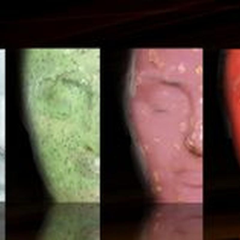 Tratamientos faciales Casmara: Servicios de Terapies Naturals BIB
