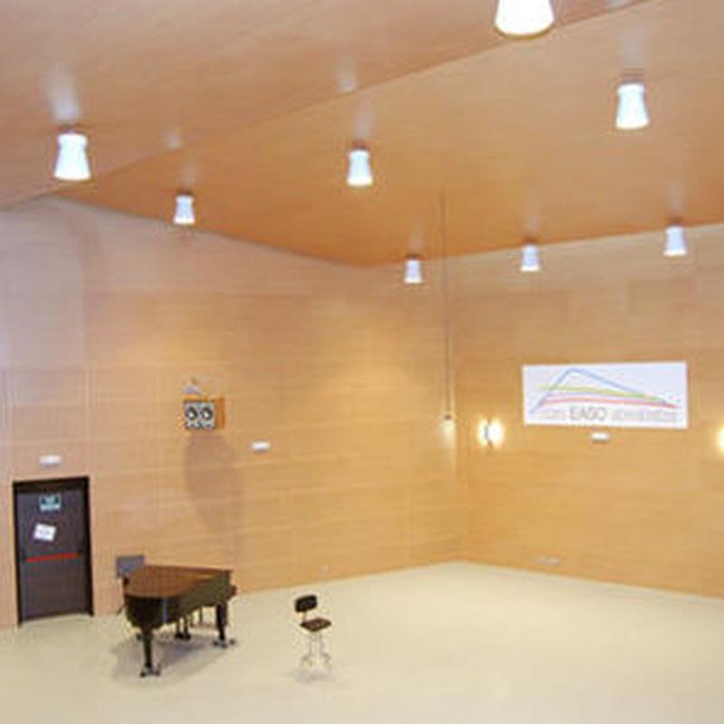 CORO EASO DONOSTIA-SAN SEBASTIÁN (GIPUZKOA): Nuestros Trabajos de Eko Ingeniería Acústica