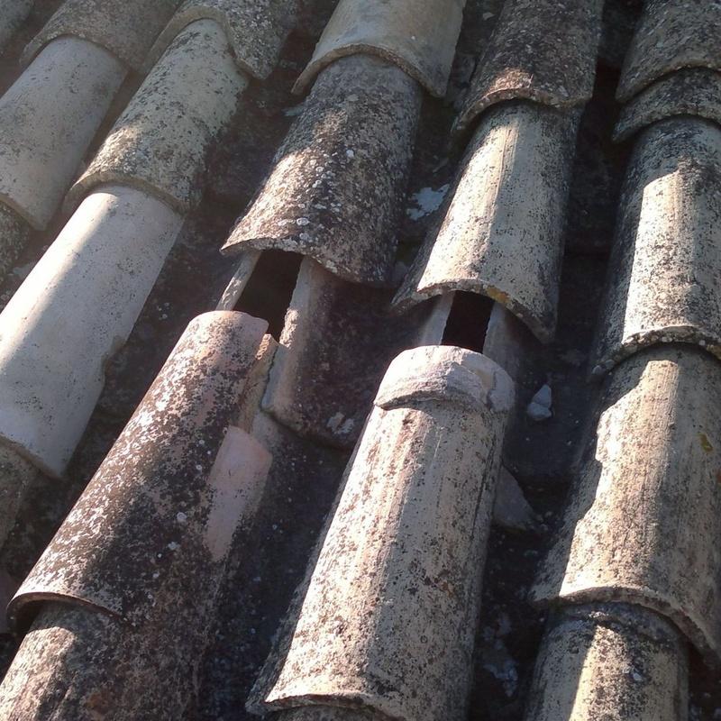 Reparación de goteras: Servicios de Canaltom