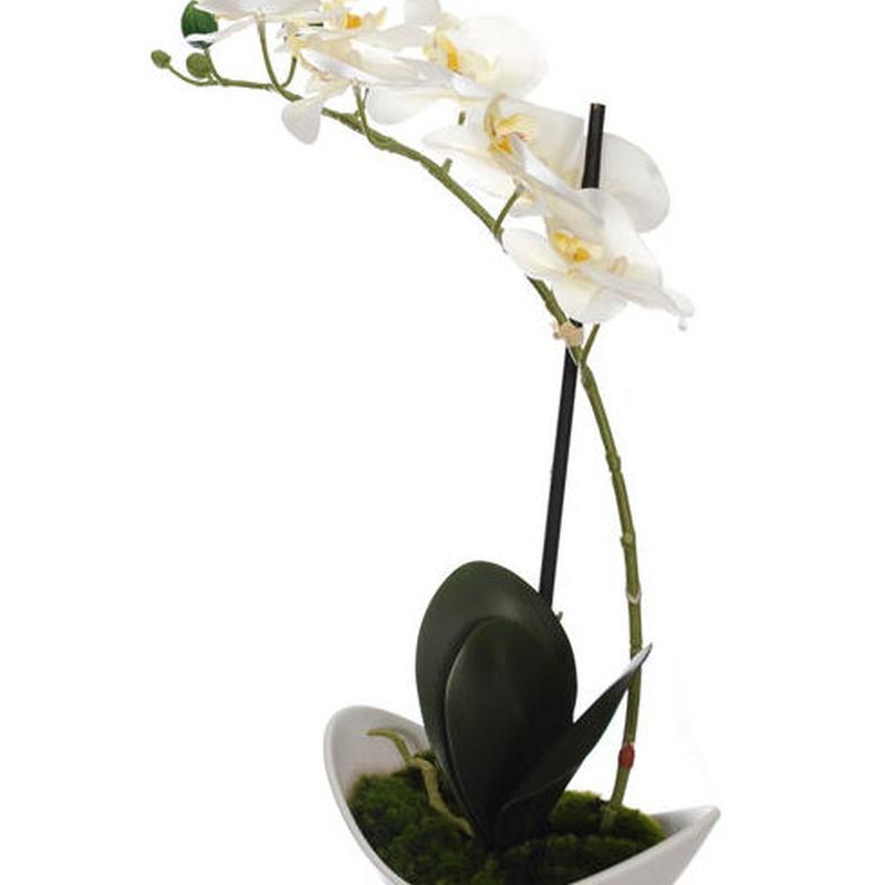 PLANTA ORQUIDEA/BOWL PLASTIC BL. COLOR:BLANCO REF.:56010258/CR PRECIO:12,00 €