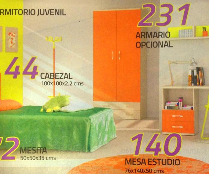 habitacion juvenil mod.73: Productos  de Muebles Llueca, S. L.